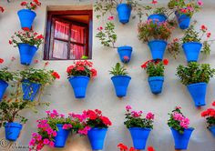 Jessica mckay-dasent - this made me think of your blue kitchen !  cordoba, spain by fco. javier cuenca