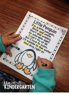 Miss Kindergarten: Penguin Poetry!