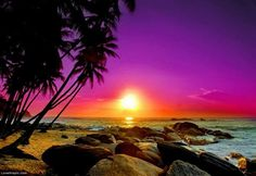 Rocky Beach Sunset photography sunset beach nature purple orange dramatic rocky