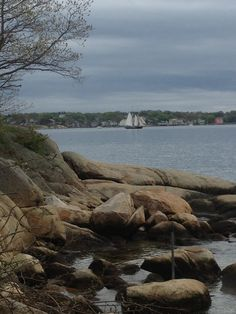 Wiccan Moonsong: Pictures From Outing to Salem and Gloucester MA Yesterday :))))  Ship, Stage Fort Park, Gloucester MA