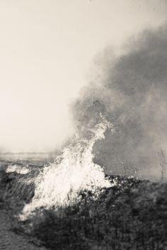 "Jordan Sullivan, ""Burning Field"" from An Island In The Moon.   Opening Thursday, November 6th, 2014.  Reception November 9th, 6 – 8 PM. Peter Hay Halpert Fine Art at Site 109 109 Norfolk St New York, NY 10002"