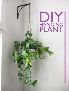 Great 30 perfect and beautiful hanging bathroom plants decor ideas - . Great 30 perfect and beautiful hanging bathroom plants decor ideas - Plantas Indoor, Decoration Plante, Bathroom Plants, Bathroom Green, Hanging Planters, Hanging Plant Diy, Indoor Hanging Plants, Hang Plants From Ceiling, Indoor Plant Hangers