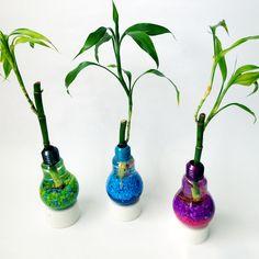 SOLOUNO XL Bambú - Para los que les guste diseñar su propio estilo de decoración