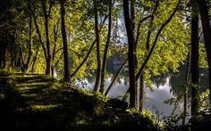 Water's Edge - Original fine art color landscape nature photography by Bob Orsillo.  Copyright (c)Bob Orsillo / http://orsillo.com - All Rights Reserved. Buy art online. Buy photography online