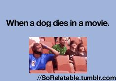 (gif) So relatable.  Ughhh.  Marley and Me.  I am Legend.  Kill me now.