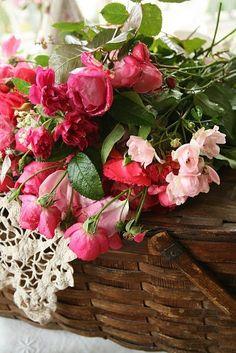Cinnamon Rose Cottage