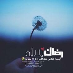 . . . رضاك يا الله ألبسه لقلبي  كباقة ورد لا تموت  / .. . . . #مساء_الخير by hamsalkwafi