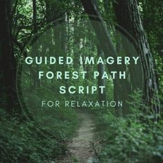 Guided Imagery Is An Excellent Technique For Calming The Mind