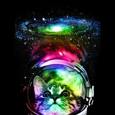 Cosmos Cat Canvas Print by clingcling Canvas Art Prints, Framed Prints, Space Cat, Cat Shirts, Kittens Cutest, Cosmos, Just For You, Neon, Abstract