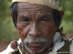 Yanomami; Brasil (America, southern continent)