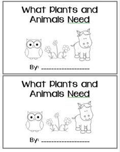 Basic Needs of Living Things Sort (Plants and Animals