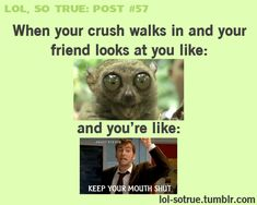 Haha happens to me and my bff all the time lol! When Your Crush, She Wolf, I Love To Laugh, Laughing So Hard, Superwholock, So True, Funny Cute, That's Hilarious, That Way