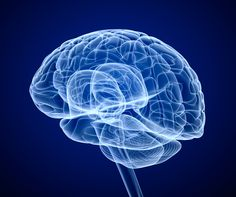 'What's Your Real Brain Age?' Take This Alzheimer's Risk Test and Find Out Zhengzhou, Traumatic Brain Injury, Negative Thinking, Spinal Cord, Cortisol, Blood Test, Brain Health, Mental Health, Multiple Sclerosis