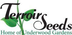Terroir Seeds | Underwood Gardens