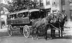 Bus de caballos...