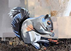 Squirrel by collage artist Megan Coyle
