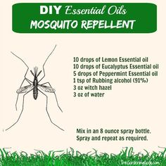 This essential oil mosquito repellent spray is very easy to make and has quite a nice aroma. It is effective and much cheaper than store bought repellents. Mosquito Repellent Essential Oils, Essential Oil Bug Spray, Eucalyptus Essential Oil, Essential Oil Uses, Doterra Essential Oils, Young Living Essential Oils, Essential Oil Diffuser, Diy Mosquito Repellent, Natural Mosquito Repellant