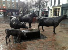 children love climbing onto these Jersey Cows to have their photos taken - Wests Centre, St Helier Jersey Cows, Jersey Channel Islands, Sculpture, Canary Islands, Bosnia And Herzegovina, British Isles, European Travel, Trip Advisor, Centre