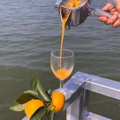 Cool Gadgets To Buy, Cool Kitchen Gadgets, Kitchen Hacks, Cool Kitchens, Kitchen Tools, Instruções Origami, Manual Juicer, Healthy Juices, Delicious Fruit