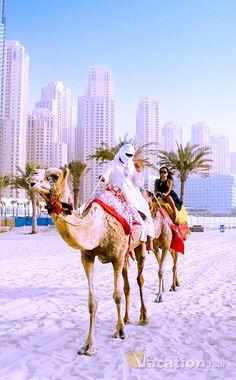 Camel Riding in Dubai. #dubai #travel #tour