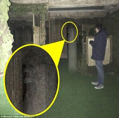 Katy Morritt, was on a ghost hunt at former slaughterhouse-turned tourist attraction & Village& in Mansfield, Nottinghamshire, when she captured the scream and ghostly face on film. Real Ghost Pictures, Creepy Pictures, Ghost Photos, Ghost Film, Ghost Caught On Camera, Best Ghost Stories, Spirit Ghost, Ghost Sightings, Real Haunted Houses