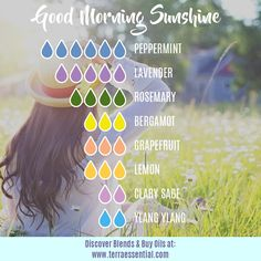 Very Helpful Ginger Essential Oil Tips For ginger essential oil uses Essential Oil Perfume, Essential Oil Diffuser Blends, Doterra Essential Oils, Essential Oil Combinations, Aromatherapy Oils, Aromatherapy Recipes, Lavender, Diffuser Recipes, Air Freshener