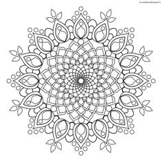 Focus Wellness Mandala No. 12 for coloring