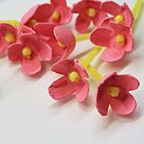 Egg Carton Cherry Blossoms by Amanda Formaro for Spoonful.com