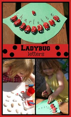 Ladybug letters to learn their names