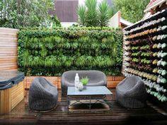 mur végétal et jardin vertical à la terrasse en bois