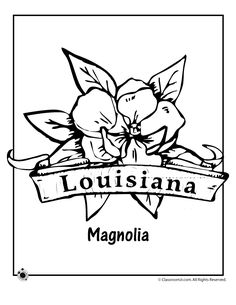 State Flower Coloring Pages New Jersey State Flower Coloring Page