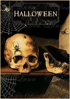 Vanitas Halloween Image Graphic Instant Digital Download