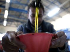 You may have heard by now that the olive oil in your kitchen cupboard may be an impostor. After a 2010 report found that 69 percent of imported olive oil in the U.S. failed to meet international st…