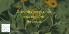 Everything comes to you at the right time. Be patient!