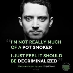 """Actor Elijah Wood thinks it's time to change our marijuana laws. He recently tweeted that he """"can't believe we're still having this debate in 2013.""""    Repin this if you agree.     http://MarijuanaMajority.com/ElijahWood"""