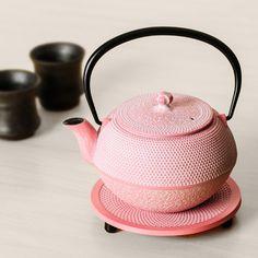 OIGEN Japanese iron pot  want!!