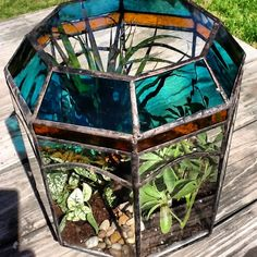 Stained glass terrarium. The plant gets a bit lost but hey - still great!