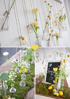 Flower Love: Billy Buttons