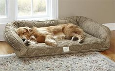 Our memory foam dog beds let your companion relax in superb luxury.