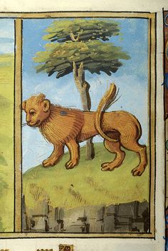 Zodiac Sign: Leo | Psalter | France, Paris | between 1495 and 1498 | The Morgan Library & Museum