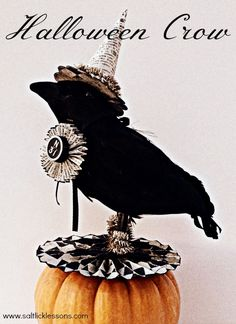 I loved dressing this Halloween crow up into fancy clothes. He looks very fancy for the trick-or-treaters now.