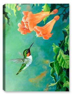 eacd93c5b77 Hummingbird and Trumpet. Canvas Art Plus