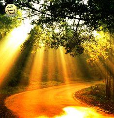 en-NÛR: Alemleri, bütün kâinâtı nurlandıran, aydınlatan; istediği simalara, zihinlere ve gönüllere nur, aydınlık ihsan edendir.