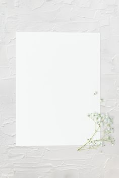 Plain Wallpaper, Framed Wallpaper, Flower Background Wallpaper, Flower Backgrounds, Wallpaper Backgrounds, Paper Wallpaper, Wallpapers, Marco Polaroid, Polaroid Frame