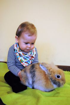 Húsvéti Nyuszisimogatós Aktívmami Fitness :: AktívMami Rabbit, Children, Fitness, Animals, Bunny, Young Children, Rabbits, Boys, Animales
