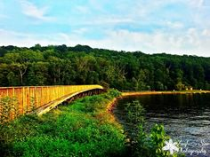 Bridge at Back Waters in Cheat Lake, West Virginia by Amy Sine