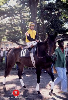 Forego - 2 time horse of the year