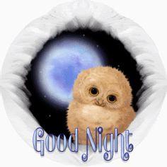 Good Night photo 4b056506f77a4827bc9e8c610e624aea.gif