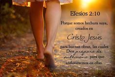 Efesios 2:10 los cerré no quiero perturbar La Paz de tu corazón