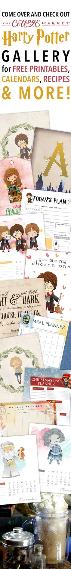 Harry Potter Movies Fantastic Beasts lot Harry Potter And The Cursed Child Movie Cast; Harry Potter Cast Filch this Harry Potter Go Harry Potter Printables, Harry Potter Food, Harry Potter Movies, Planners, Big Party, Mischief Managed, Party Packs, Monthly Planner, Recipe Cards